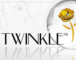 Twinkle Enterprises Logo